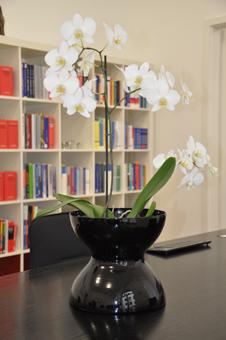 Foto Schreibtisch - Ambassador Versicherungsmakler - Pabst Finanzberatung Bielefeld - Ihr Experte für Finanzen, Immobilien und Versicherungen